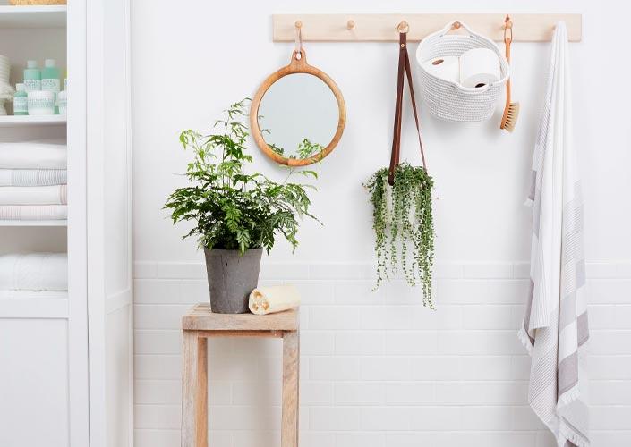 Objetos de decoração para banheiro