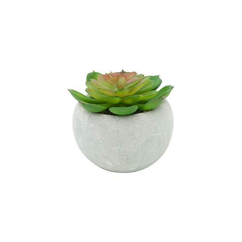 Mini Vaso Concreto Carnicolor Sucullent Urban Branco/Verde Cimento