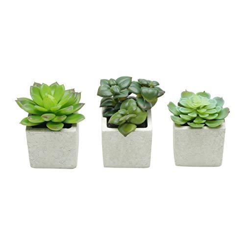 Set C/3Pcs Vasos Plástico/Cerâmica Sucullents Flowers Urban Branco Porcelana