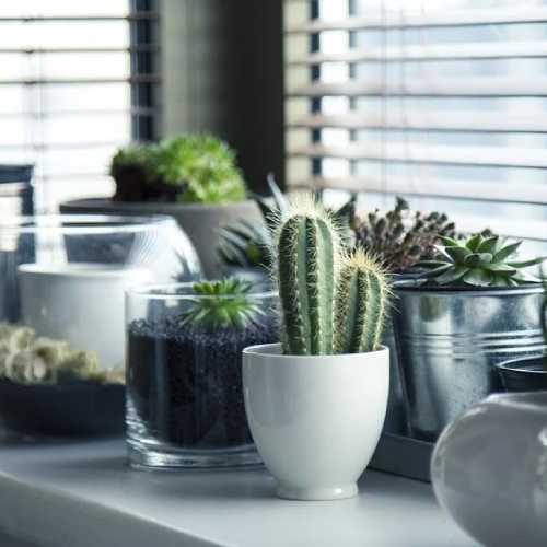 Objetos para decoração de interiores da casa