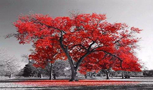 Quadro Decorativo Arvore Vermelha 55x100